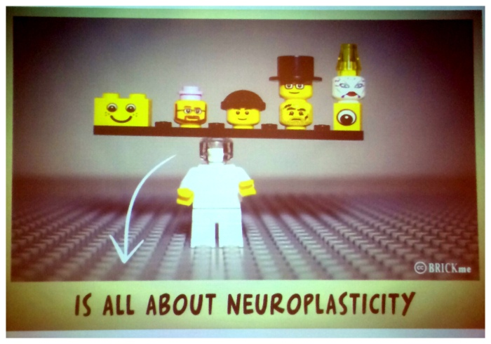 """It's all about neuroplasticity"" by Jaap den Dulk is licensed under CC BY 2.0"